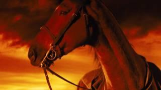 Video WAR HORSE Trailer 2011 - Official [HD] download MP3, 3GP, MP4, WEBM, AVI, FLV September 2018
