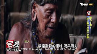 南美發現原始部落 為爬樹進化成6腳趾 宅男的世界 20170210 部落 検索動画 26