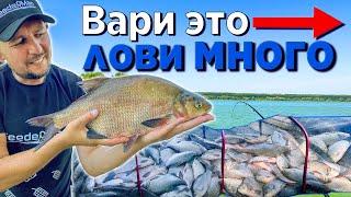 МЕГА улов на ФИДЕР 2020! 40 кг рыбы за сутки! Ловля леща, карася и сазана на фидер.
