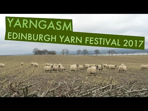 "YARNGASM: Episode 227 - ""Edinburgh Yarn Festival Recap + Yarn Haul"""