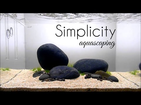 Aquascaping GAME OF RIVER STONE (SIMPLICITY)