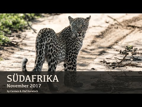 Afrika 2017