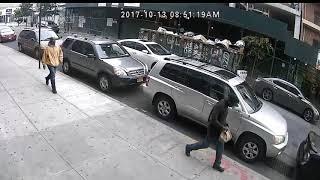 Williamsburg Car Thieves