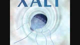 Xalt - The River