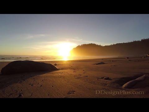 Jefferson Cove to Mosquito Creek Hike, Pacific Ocean - Washington State