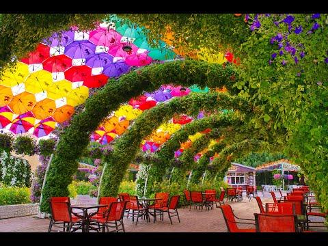 Dubai Miracle Garden Season 9 is Back