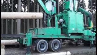 Holzentrindung