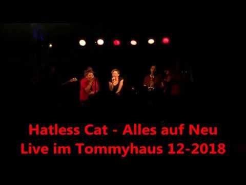 Hatless Cat  Alles auf Neu