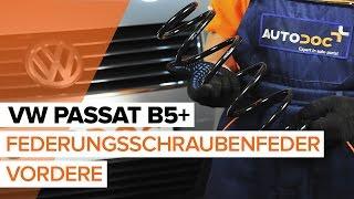Installation Schraubenfeder hinten + vorne VW PASSAT: Video-Handbuch