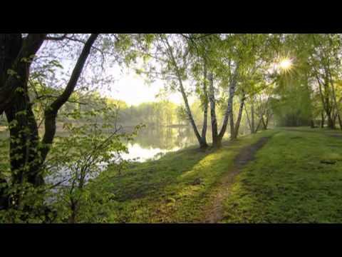 Клип Мельница - Луч солнца золотого