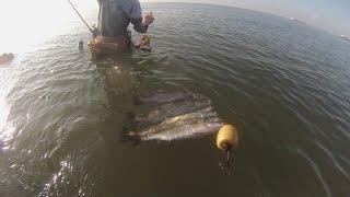 Wade Fishing Boliver Peninsula (Galveston, Texas)