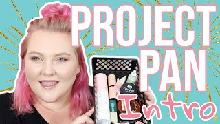 What Makeup Can I Use Up by the End of the Year!? // Project Pan Intro! | Lauren Mae Beauty