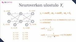 Kuinka neuroverkko toimii?