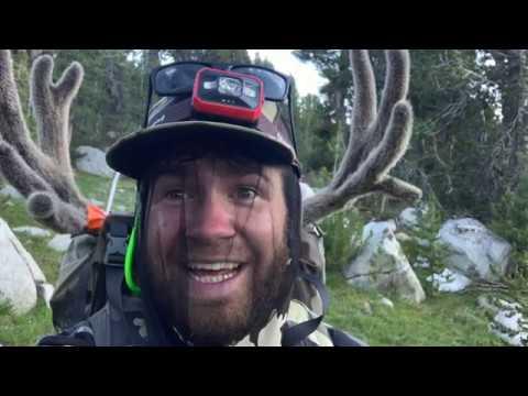 Giant California Archery Buck Down! Solo Hunt (2019)