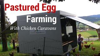 Pastured Egg Farming With Chicken Caravans