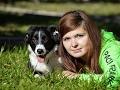 Щенки бордер колли / Border collie puppies live