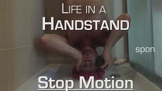 Life in a Handstand (Stop Motion Edition): The Morning Routine