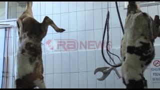 Lushnje, Pikat e tregtimit të mishit, Panariti: Të proçedohet me heqjen e liçensave- Ora News