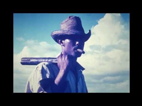 Cuba farming 1960's