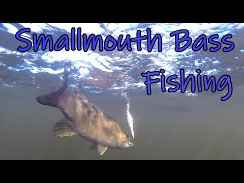 Fall Fishing for Smallmouth Bass New Brunswick Canada-2018