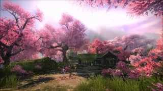 Beautiful Chinese Music - Chronicles of the Hundred Flowers Grave