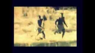 ЮМОР, РЖАЧ обезьяны убегают от охотников на кабане животные, +100500, This is Хорошо