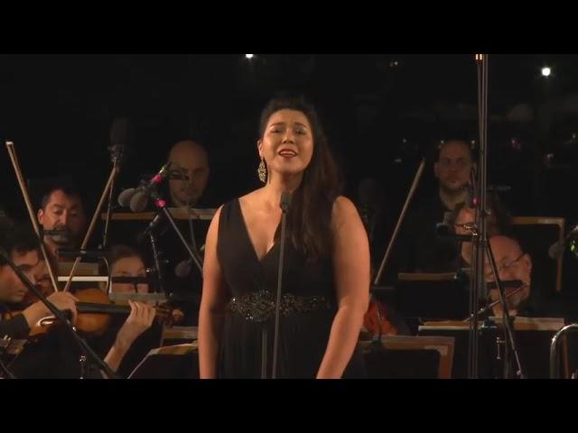 Quand je vous aimerai? ... L'amour est un oiseau rebelle (Carmen) - Bizet