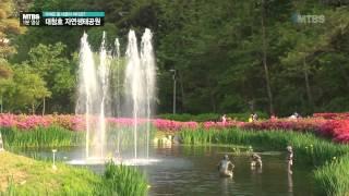 MTBS 1분영상 - 대청호 자연생태공원