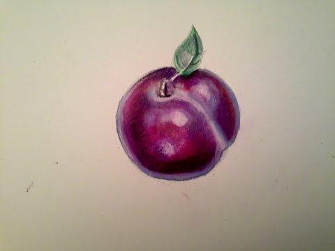 YouDraw: : Plum w/ Watercolor Pencils & Prismacolor Color Pencils