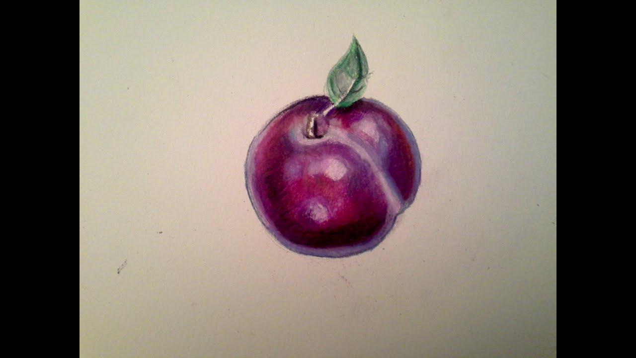 youdraw plum w watercolor pencils u0026 prismacolor color pencils