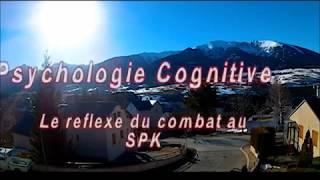 Psychologie Cognitive Du Self Pro Krav (spk)