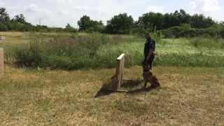 Gautier Police Train New K9 Justice
