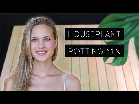 Ideal Potting Soil Mixture for Houseplants 1