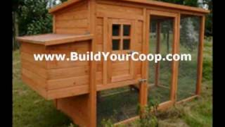 Chicken Coop Kits - The Right Choice?
