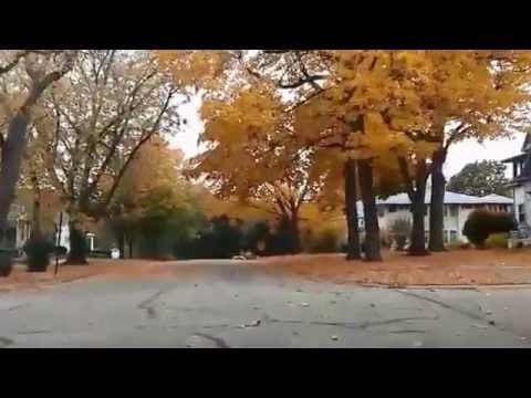 Autumn In Morris, IL