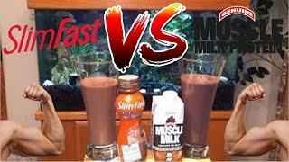 Slim Fast VS Muscle Milk Nutrition Shake Review(Another SUPER EXCLUSIVE battle review between Slim Fast Creamy Milk Chocolate and Muscle Milk Chocolate. ENJOY!!!, 2013-12-13T04:43:17.000Z)