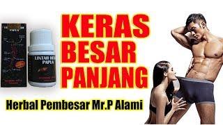 Minyak Lintah Papua Hitam Dan Merah 08117201444 Cara Memperbesar Senjatamu