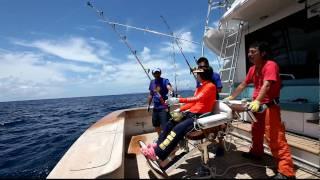 Video カジキとのファイトシーン 第32回国際カジキ釣り大会 JIBT 下田 download MP3, 3GP, MP4, WEBM, AVI, FLV Juli 2018