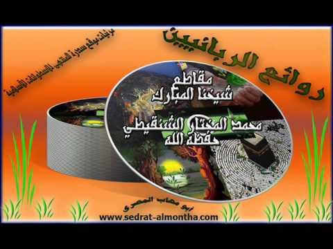 ما حكم خروج المذي في الصيام الشيخ الشنقيطي Youtube