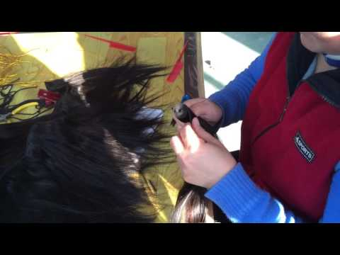 QINGDAO WINBOWIG HAIR FACTORY