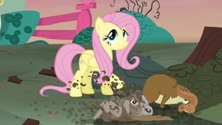 #58 - Все песни My Little Pony / Мой маленький пони - 5 сезон. Будет тут уютный дом