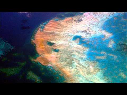 Protecting Great Barrier Reef 'needs A$785m' fund