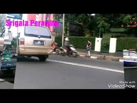 Srigala Petarung By Iwan Fals