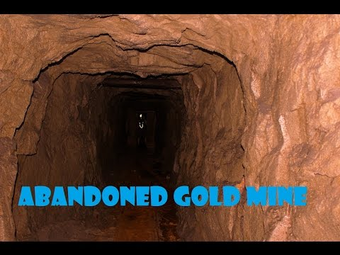ABANDONED: Gold mine. Found Gold???