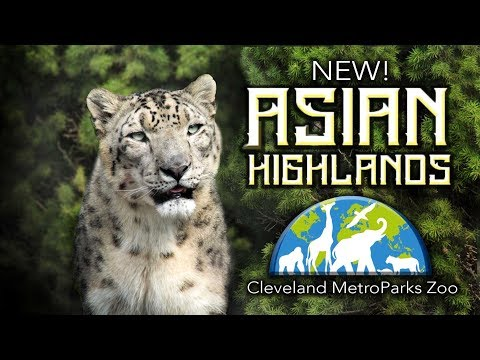 Tour Of The New! Asian Highlands || Cleveland MetroParks Zoo