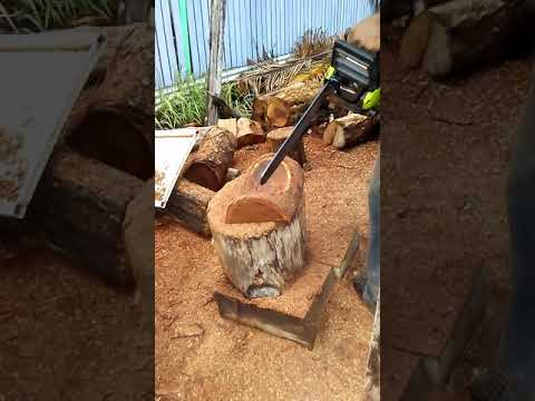 Belize wood master art of bowls