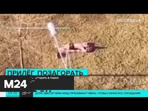 Москвич решил позагорать в парке в середине января - Москва 24