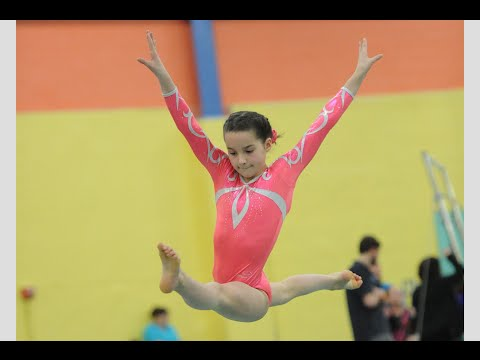 il level 5 state gymnastics meet 2015