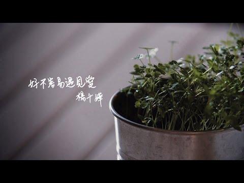 楊千嬅 Miriam Yeung - 好不容易遇見愛 MV [Official] [官方]