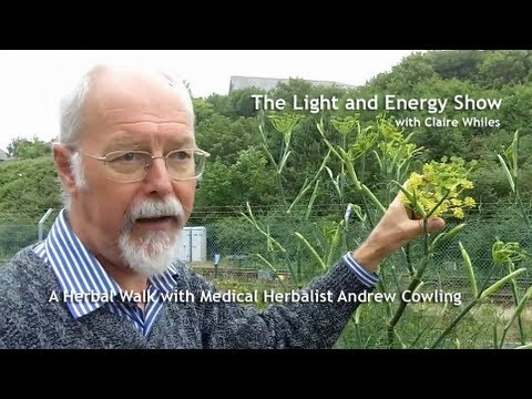 A Herbal Walk with Andrew Cowling